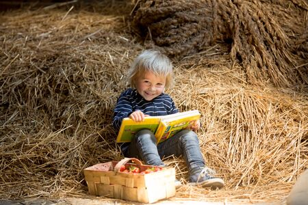 Little toddler blond boy, reading a book in the attic, nice atmosphere, strawberries next to him