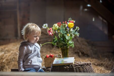 Little toddler blond boy, reading a book in the attic, nice atmosphere, flowers and strawberries next to him Archivio Fotografico