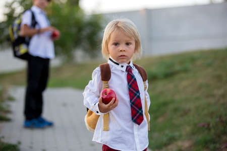 Cute preschool child, holding apple, dressed in uniform, going to preschool for the first time after summer