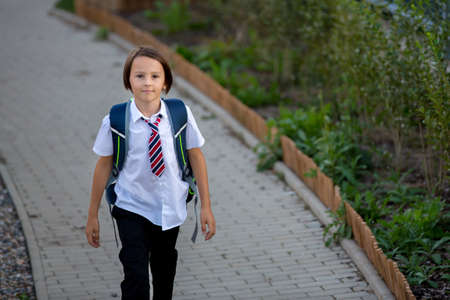 School child, boy, going back to school after the summer vacation, kid going to school autumn time