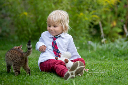 Cute child, boy, playing with little brown kitten in the park before school