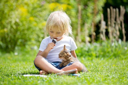 Cute blond toddler child, sweet boy, playing in garden with little kitten, reading book
