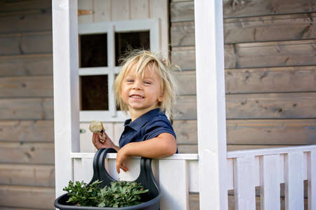 Sweet toddler boy, playing in wooden doll house in garden, looking out