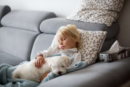 Sick child, toddler boy lying on the couch with his white puppy in living room with fever, resting at home Фото со стока