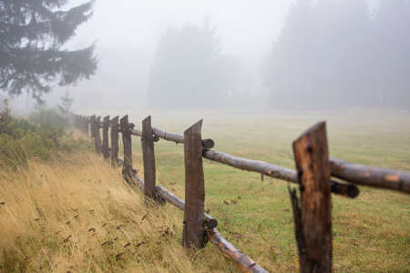 Foggy landscape with big fence in a rural field and trees and fried grass around