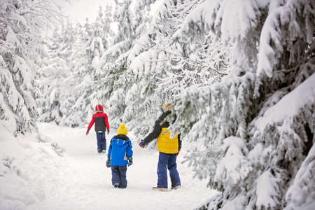 Sweet happy children, brothers, playing in deep snow in forest, frosted trees and beautiful landscape