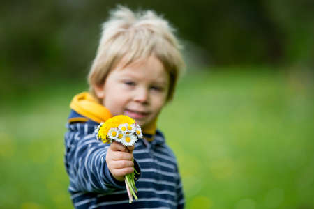 Beautiful toddler blond child, cute boy, lying in the grass in daisy and dandelions flower filed