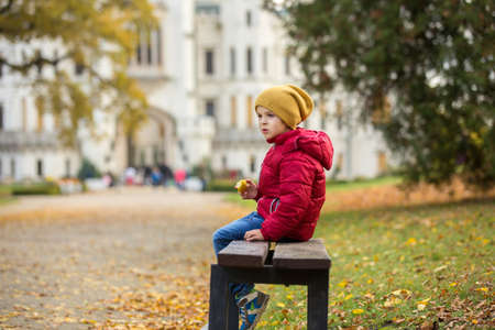 Cute beautiful child, boy, sitting on a bench in front of beautiful renaissance castle Hluboka in the Czech Republic