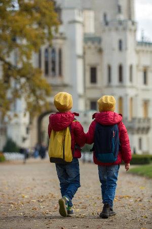 Two beautiful children, boy brothers, walking on a path in beautiful renaissance castle Hluboka in the Czech Republic Standard-Bild