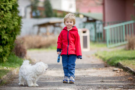 Cute toddler boy with red jacket, walking his little pet dog friend in the park