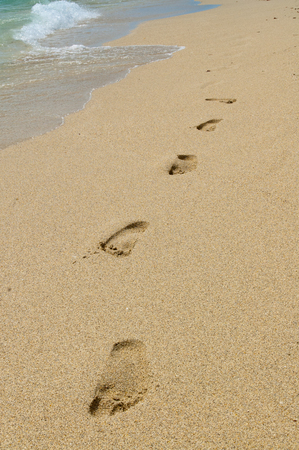 foot steps: foot steps on the beach