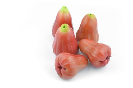 Rose apple summer fruit in thailand, Placed on a white background.