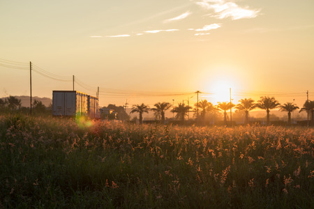 The morning sun has a beautiful orange light. A view of a meadow with a truck. Silhouette concept