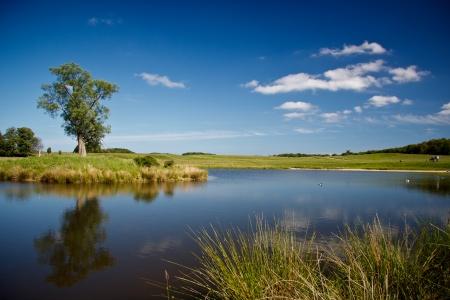 beautiful lake in Dyrehave park, Denmark