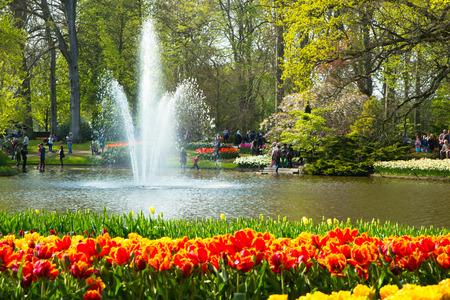 gebied van tulpen in de Keukenhof park in Nederland Stockfoto