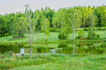 bel paesaggio lago in sothern Svezia, primavera