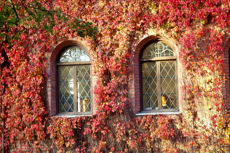sweden resting: A very old building on the campus grounds of Lund university in Sweden