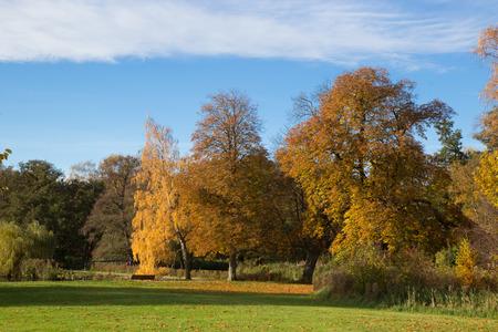 Beautiful autumn day in Frederiksbork park, Hilleroed, Denmark 写真素材
