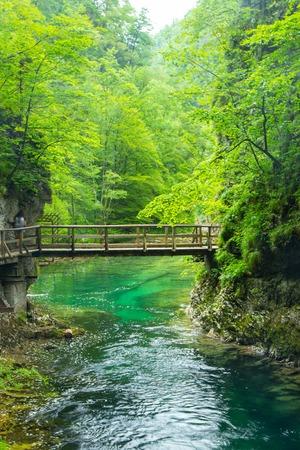 The Vintgar Gorge or Bled Gorge is a walk along gorge in northwestern Slovenia.