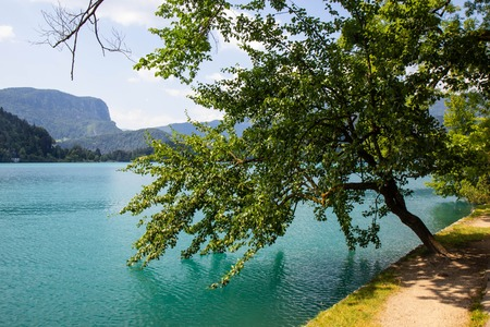 View of famous lake Bled in Julian Alps, northwest Slovenia