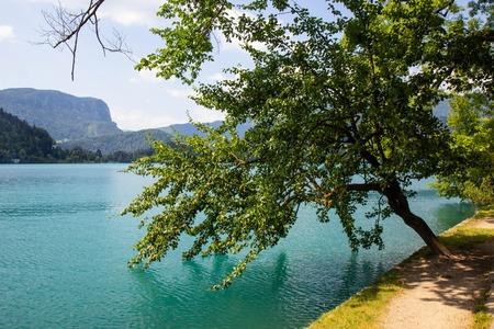 Widok na słynne jezioro Bled w Alpach Julijskich, północno-zachodnia Słowenia