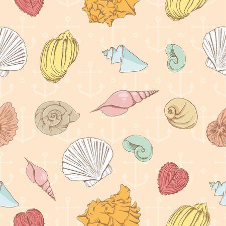 almeja: Patr�n sin fisuras con conchas marinas