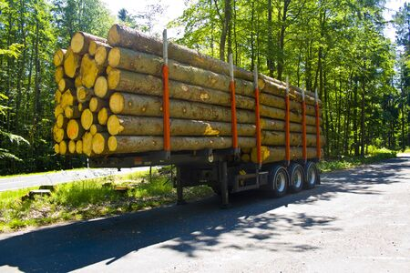 Fully loaded truck trailer with wooden pallets without truck in a parking lot