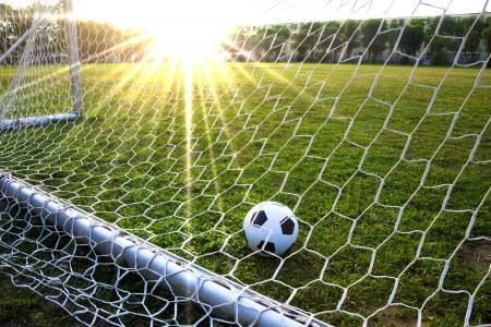 soccerfield: een voet bal in een gras veld en doel  Stockfoto