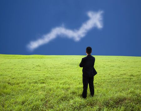 company profile: Businessman stand in the meadow and watch the business  profit graph of cloud Stock Photo