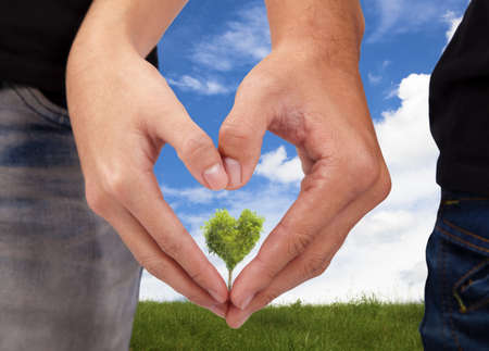 Hands of man and woman forming a heart and green love tree background photo