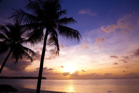 Beautiful sunset on the tropic beach and coconut palms  photo