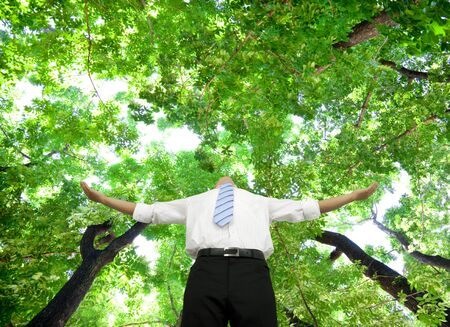 relaxed businessman stand in the forest Stok Fotoğraf