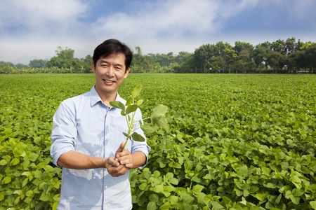 young farmer: chinese farmer holding sapling and standing on his farm