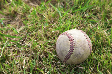 Baseball on the Grass field Stock Photo - 12181529