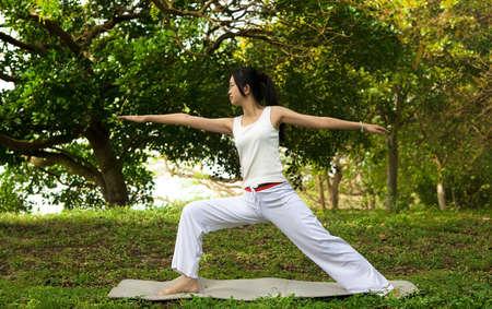yoga woman on green grass Stock Photo - 12362386