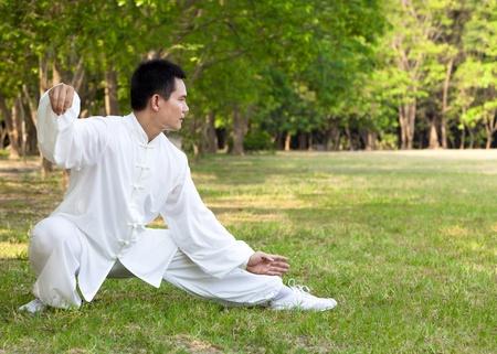 chi kung: kung fu
