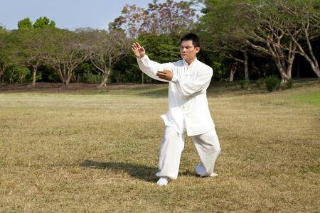 man in a kung fu position  photo