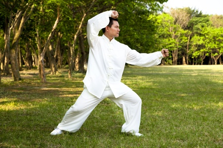 man and kung fu position  photo