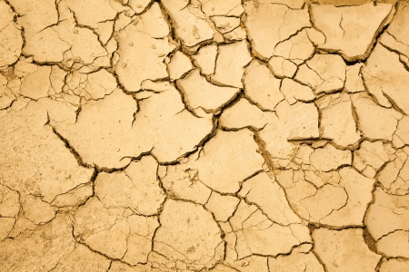 dry season with cracked ground photo