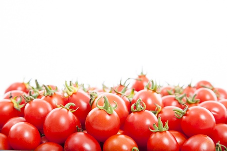 Group of fresh tomatoes on the white background photo