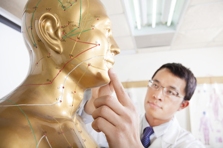 tcm: chinese medicine doctor teaching  Acupoint on human model Stock Photo
