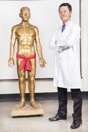 llena de doctor de medicina china y el modelo de acupuntura del cuerpo humano