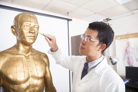 deficiency: chinese medicine doctor teaching  acupoint on human model