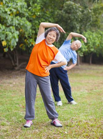haciendo ejercicio: Pares mayores que hacen ejercicio en el parque.