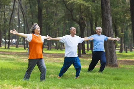 gimnasia: personas mayores haciendo gimnasia en el parque