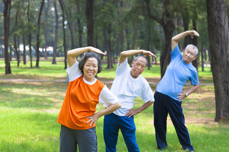 all seniors  doing gymnastics in the park photo