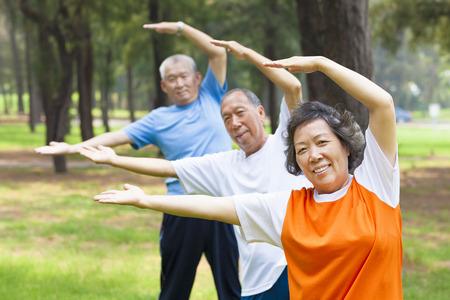 ancianos felices: personas mayores haciendo gimnasia en el parque