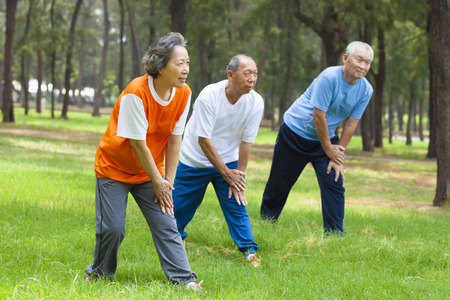 Seniors are warming up before jogging in the park Stock Photo