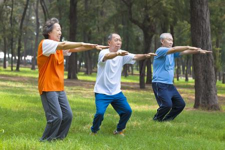 ancianos felices: seniors amigos o haciendo gimnasia en el parque de la familia