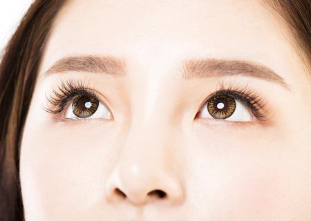 woman eye: Closeup shot of young beautiful woman eyes